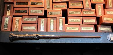 【USJ】ハリーポッターの杖44種類!オリバンダーの店で買えるキャラクター&誕生月の杖