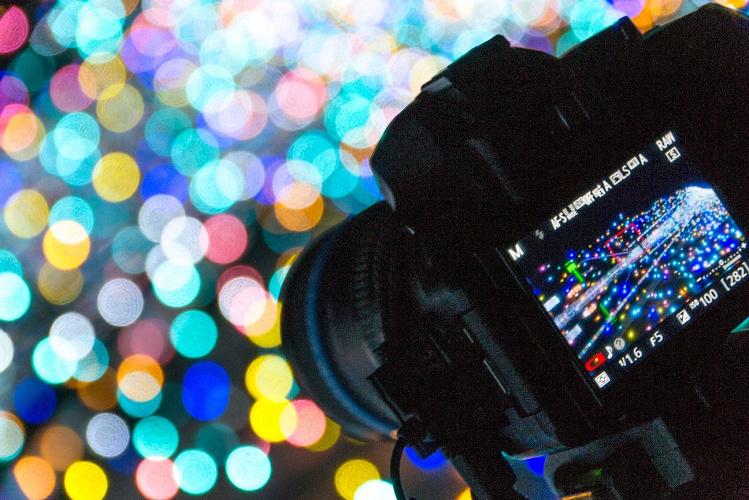 【初心者OK】ディズニー向けおすすめ一眼レフ&ミラーレスカメラとレンズの選び方!