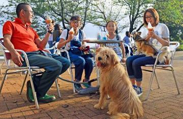 【マザー牧場】犬連れOK!ワンちゃんと一緒に使える施設&楽しみ方まとめ!