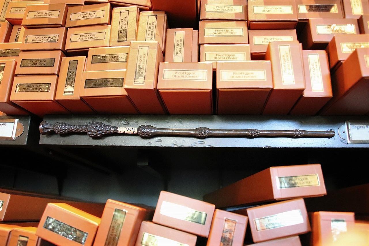【ニワトコの杖】ハリポタからファンタビまでの所有者は?小説とは違うもうひとつの結末も