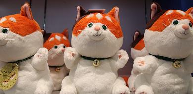 【ベイマックスの猫】「モチ」を解説!プロフィール&グッズまとめ!映画のトリビアやパーク情報についても!