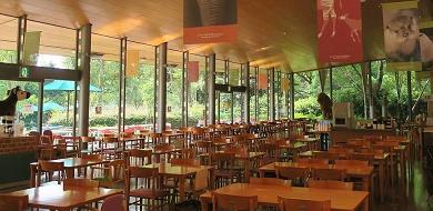 【2021】ズーラシアのレストラン紹介!ここでしか食べられないオススメ料理やランチの混雑回避術も