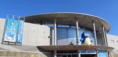 【世界一】長崎ペンギン水族館の体験レポ!チケット料金、アクセス、ランチ、お土産、見どころを紹介♪
