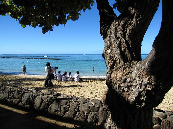 【2019最新】ハワイ・オアフ島のおすすめビーチ10選!ウミガメやアザラシに遭遇できるビーチも!