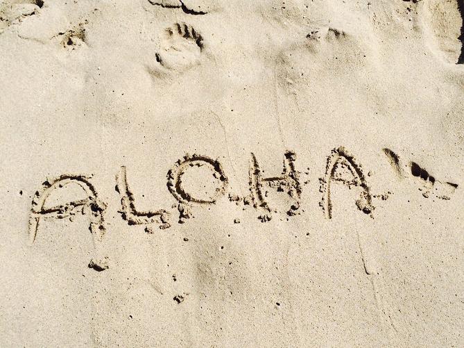 【ハワイ】家族旅行のToDoリスト10選!観光スポット、ショッピング、グルメ、交通手段も!