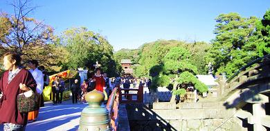 【鎌倉】鶴岡八幡宮はこう楽しむ!良縁パワースポットや、境内カフェの和スイーツも♪