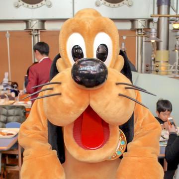 ディズニーの犬キャラクター10選!名前や登場映画と併せてご紹介!