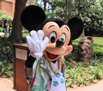 【2019】アウラニディズニーお土産グッズまとめ!宿泊者以外も購入OK!ハワイ限定&ダッフィー・オルも!