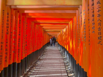 【京都】夜行バスの所要時間と料金まとめ!夜行バスのメリットやおすすめ利用方法を解説!